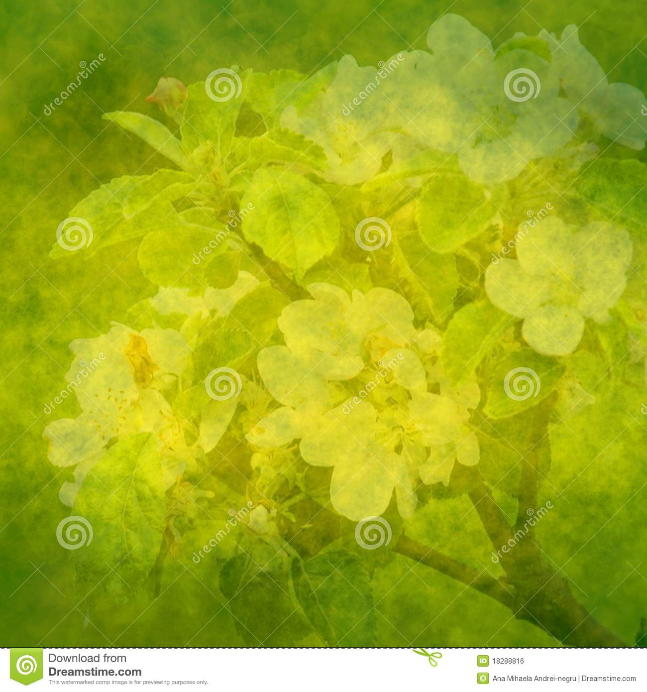 Spring Green Background With Apple Flowers Stock
