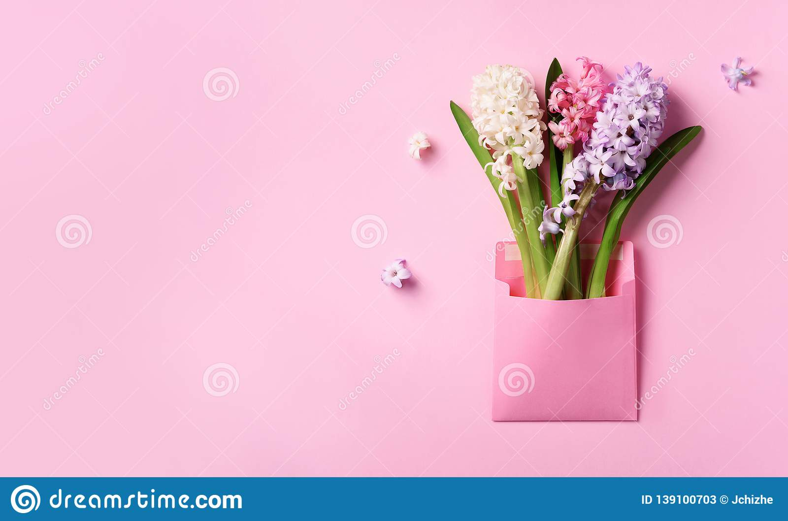 Spring hyacinth flowers in pink postal envelope over punchy pastel background with copy space. Top view, flat lay. Banner. Spring