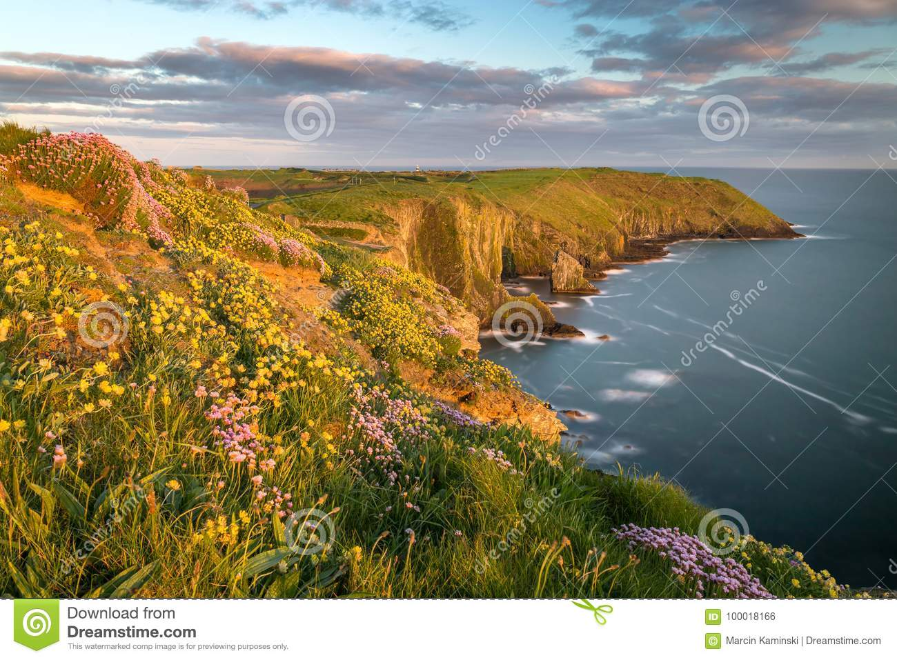 Spring In Ireland Stock Photo Image Of County Head 100018166