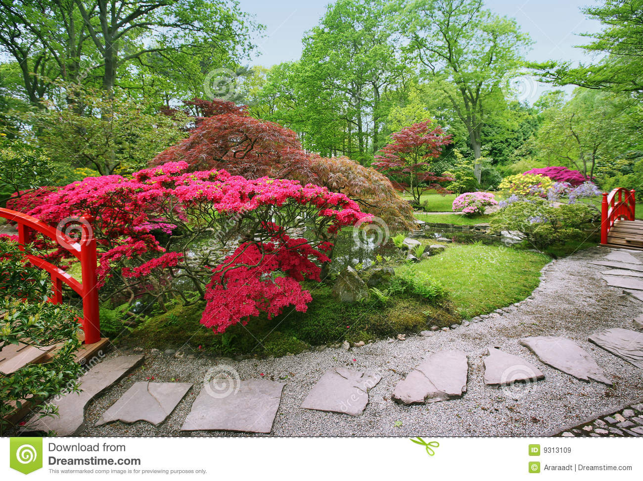 Royalty Free Stock Images Spring Japanese Garden Image9313109 on modern japanese house design