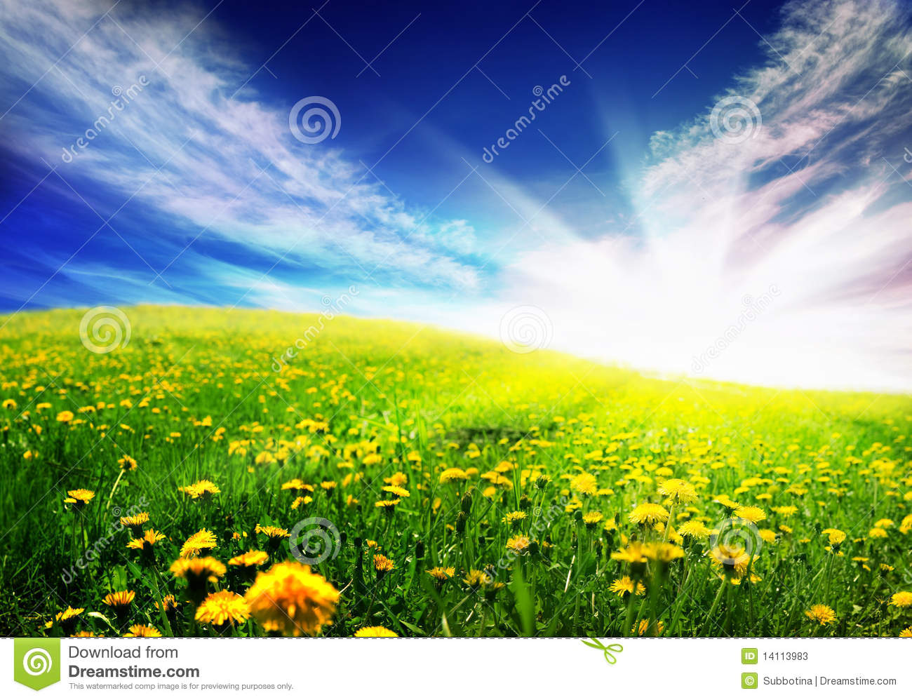 Spring Landscape Stock Photos - Image: 14113983