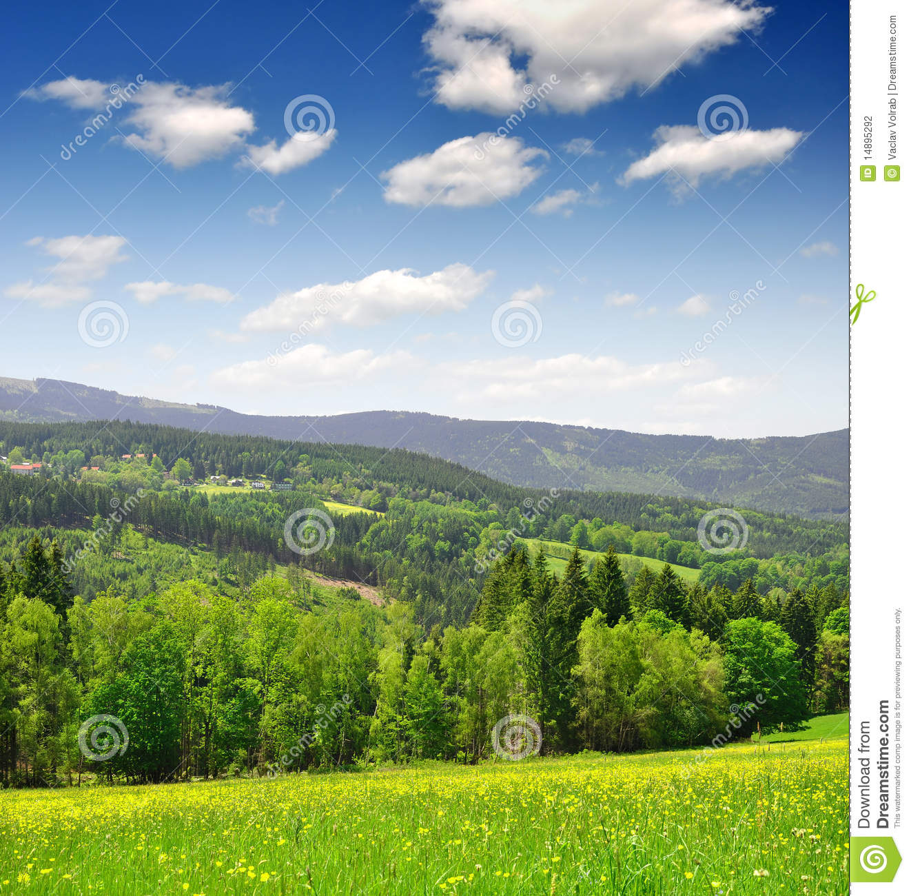 Spring landscape in the national park Sumava - Czech Republic Spring Landscape Photography