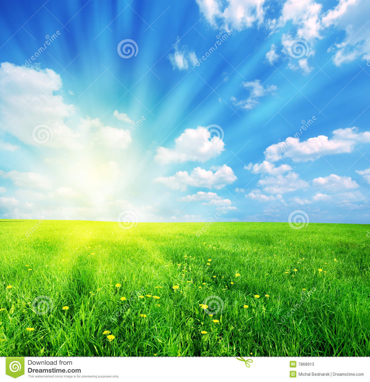 Download Spring landscape stock image. Image of land, grass, sunny - 7868913