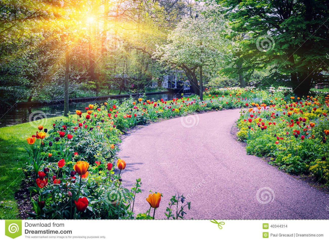 Spring landscape with colorful tulips stock photo image for Landscape my garden