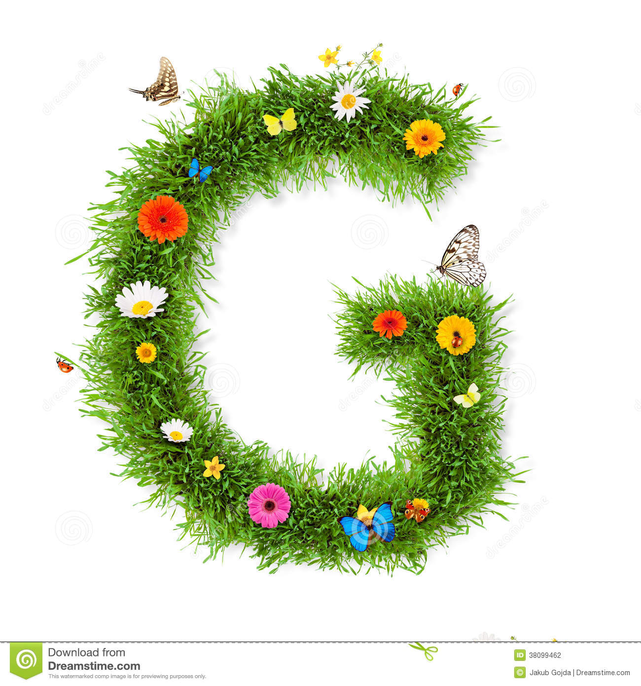 Spring Letter G Stock graphy Image