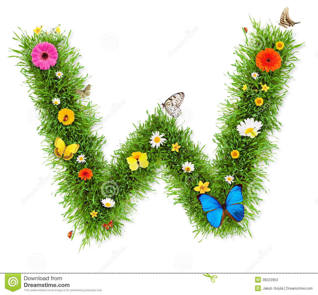 Fresh grass spring letter W with blooming flowers and butterflies ...