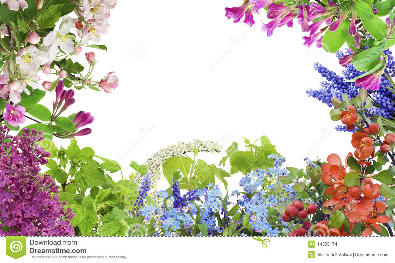 Spring May Flowers Mix Stock Photo Image Of Lavender 14558174