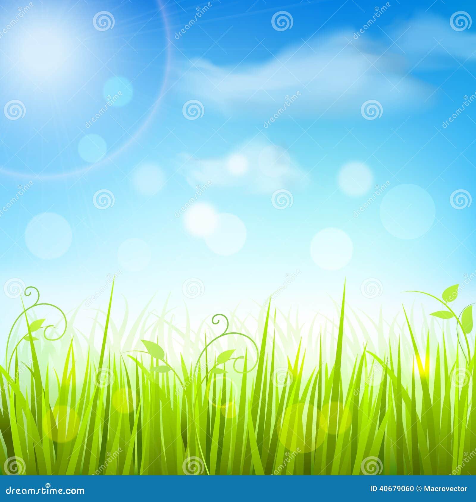 Church Floor Plan Spring Meadow Grass Blue Sky Poster Stock Vector Image