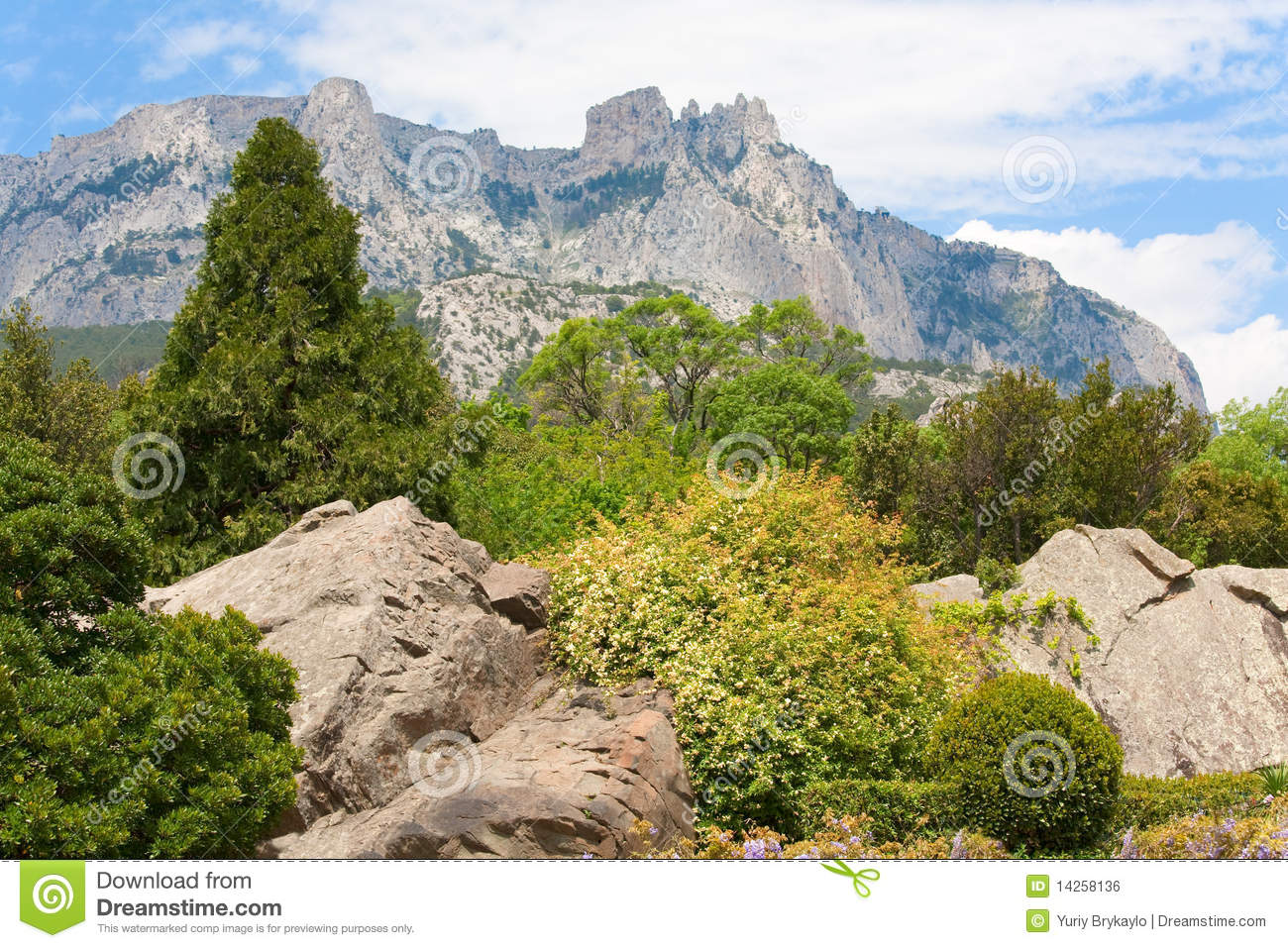spring mountain landscape the - photo #12