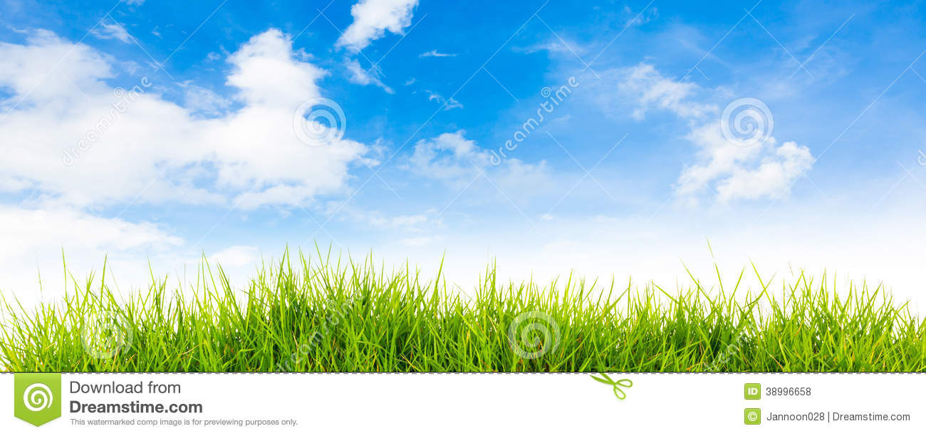 grass and sky backgrounds. Spring Nature Background With Grass And Blue Sky. Green Sky Backgrounds