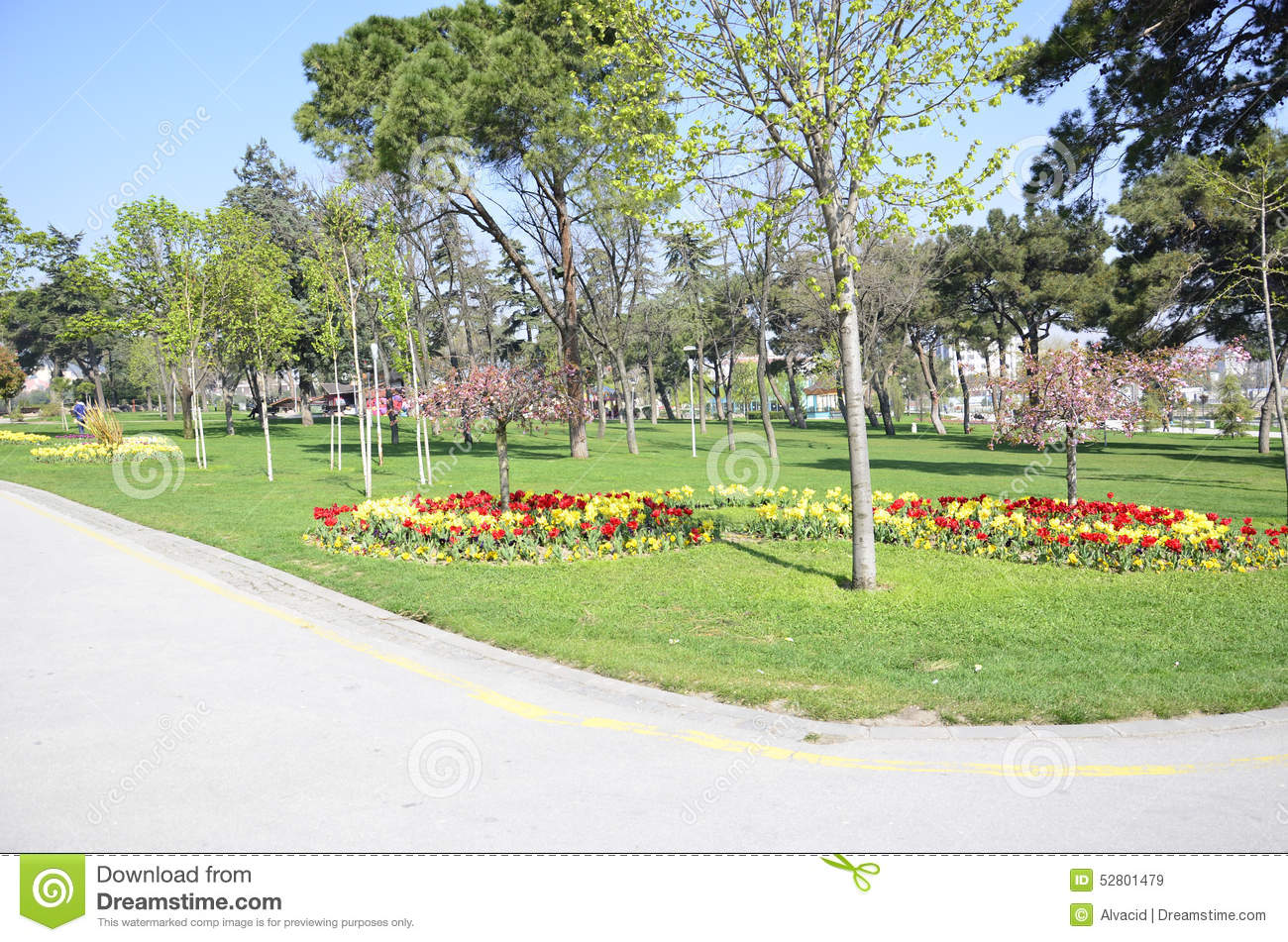 Landscape Gardening Per Hour : Spring in park stock photo image
