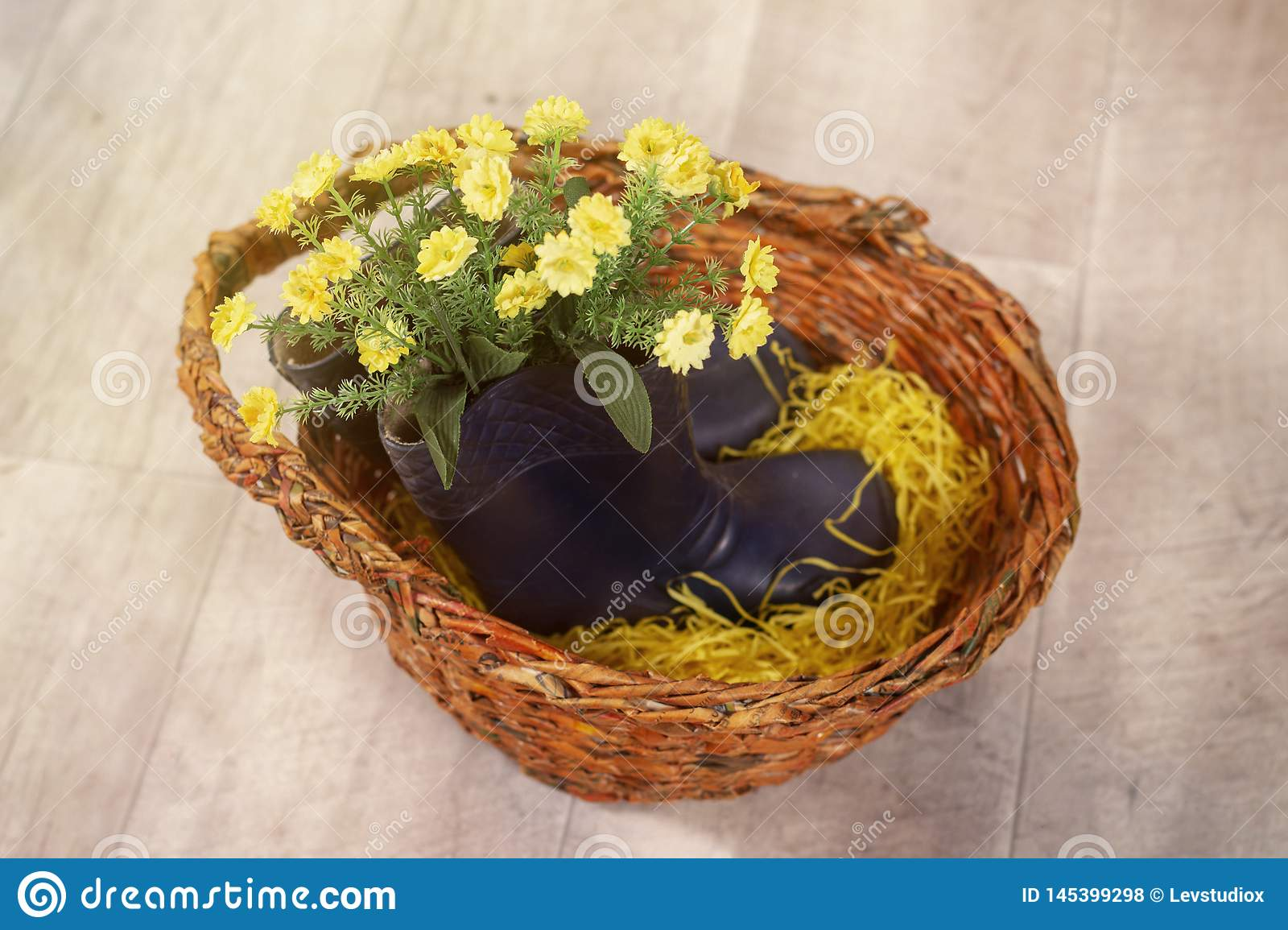 Spring photo with flowers in rubber children`s boots in a basket
