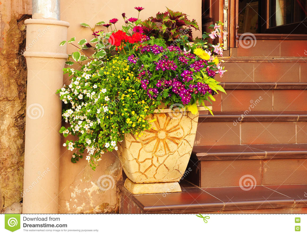 Spring Potted Flowers And Garden Shed Flower Bed In Cozy Flower Pot