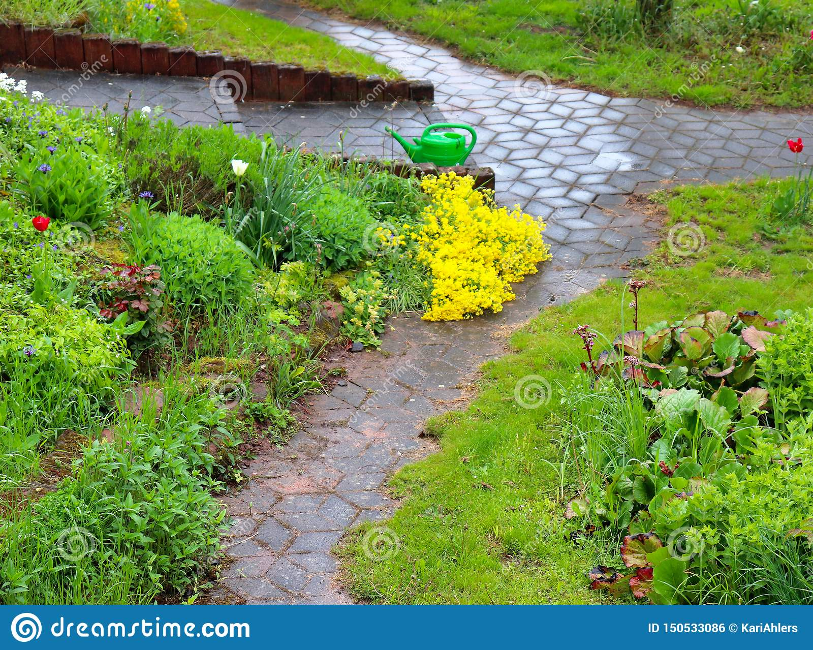 Spring rain storm in a garden in Germany