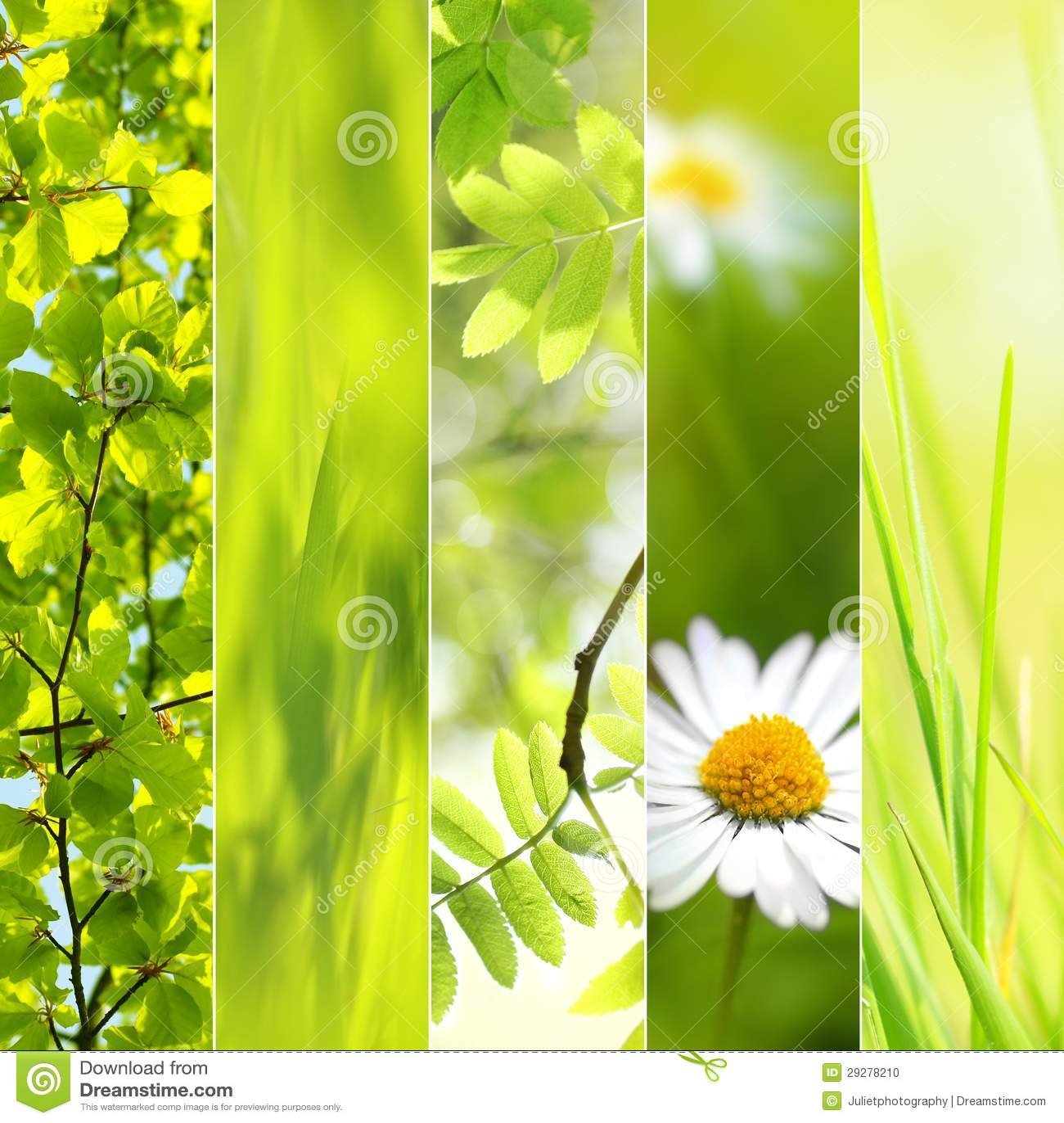 spring seasonal