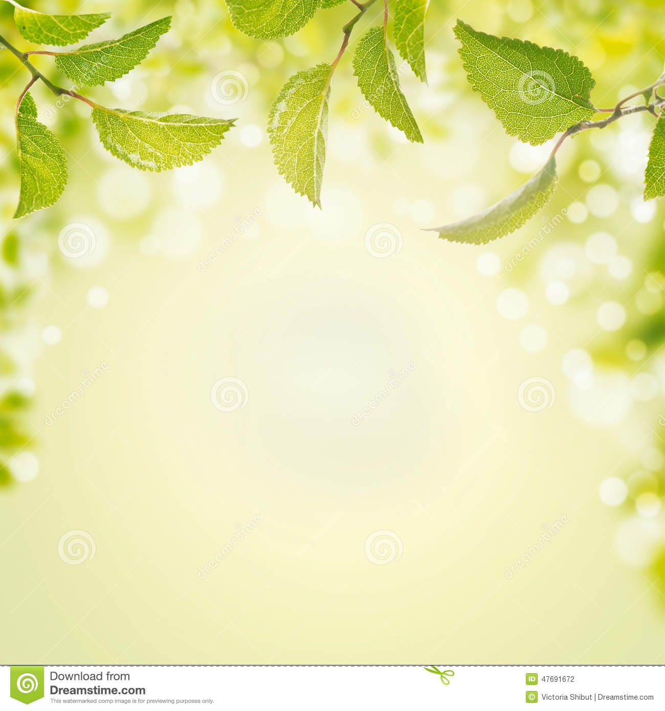 light green leaves background - photo #22