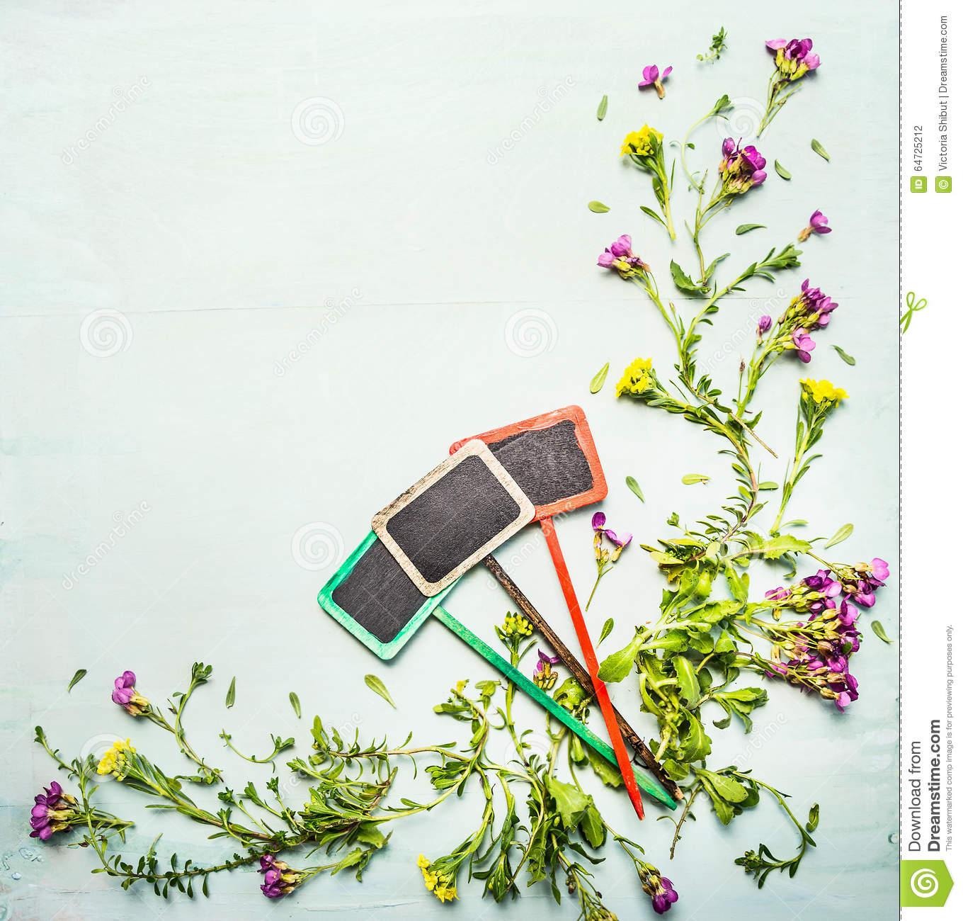 Spring Or Summer Plant And Flowers With Three Garden Sign On Light
