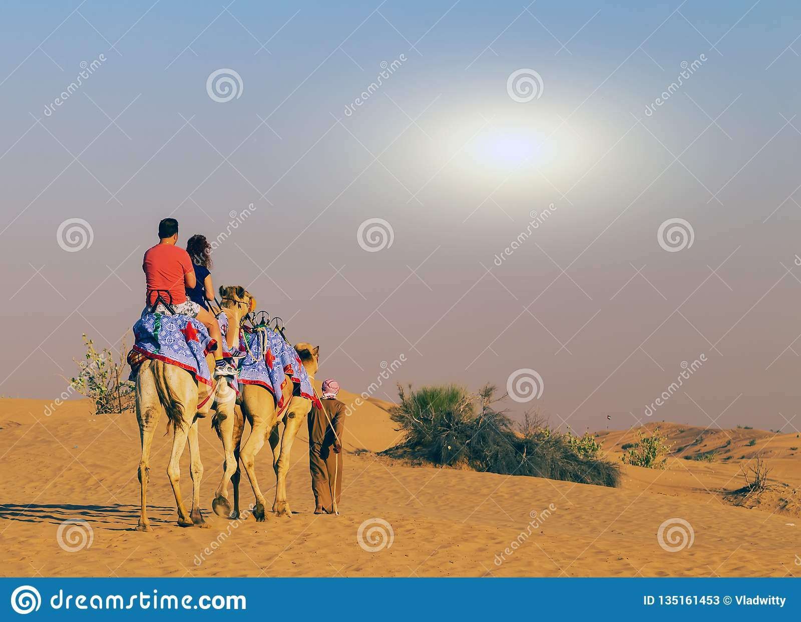 Spring Comes To Dunes >> Spring Sunset Camel Safari On Sand Dunes Editorial Stock Photo