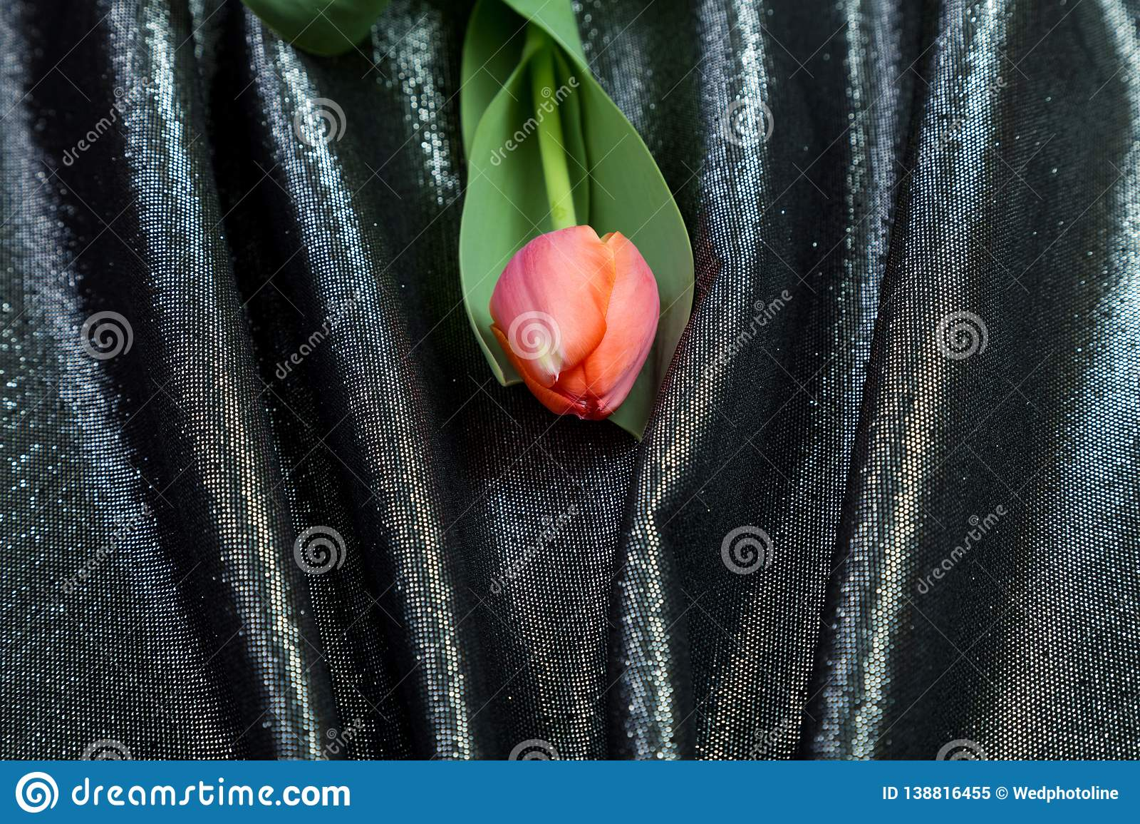 Spring tender pink tulips on brocade fabric