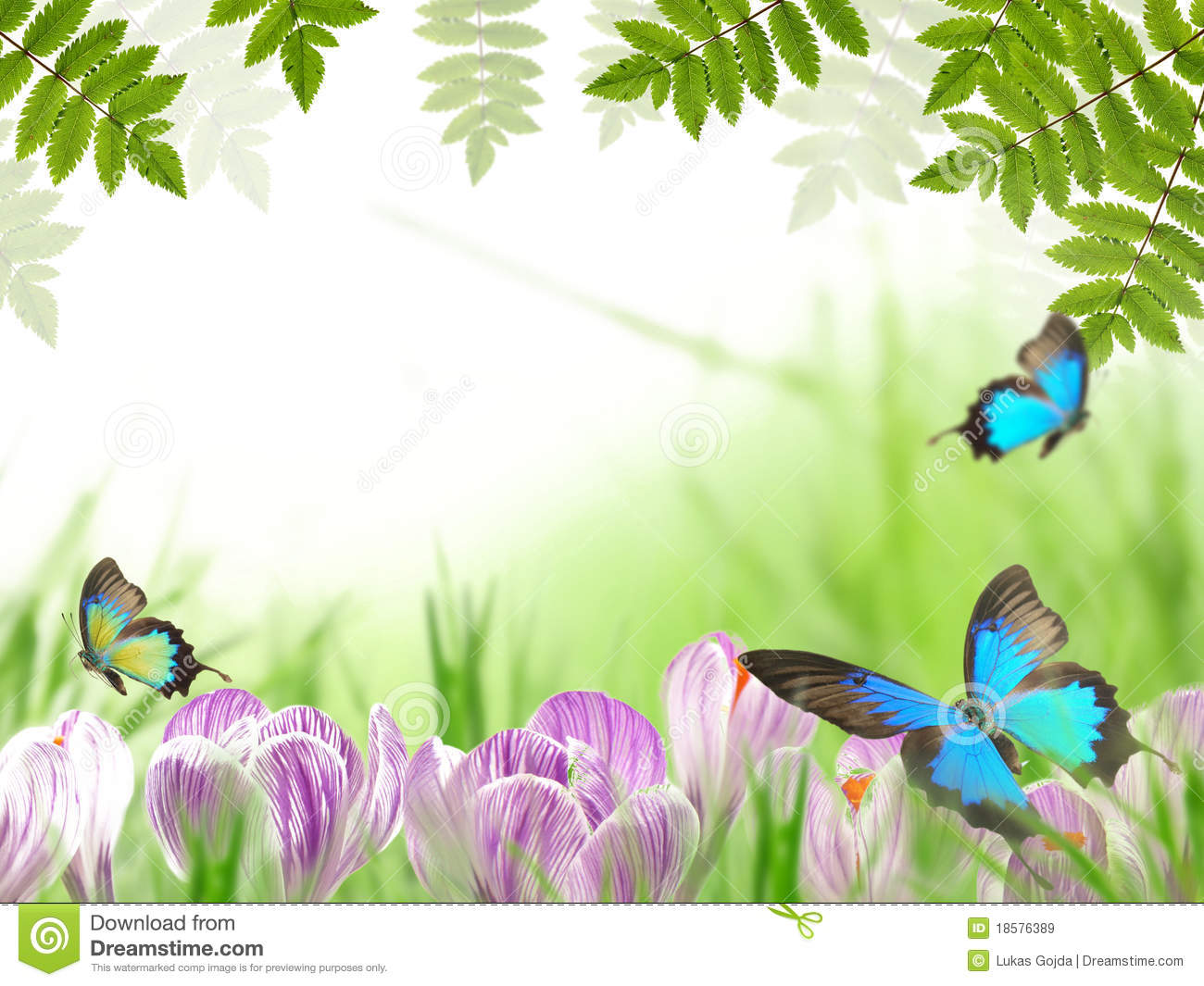Nature Images 2mb: Spring Theme Stock Image. Image Of Bloom, Fine, Copy