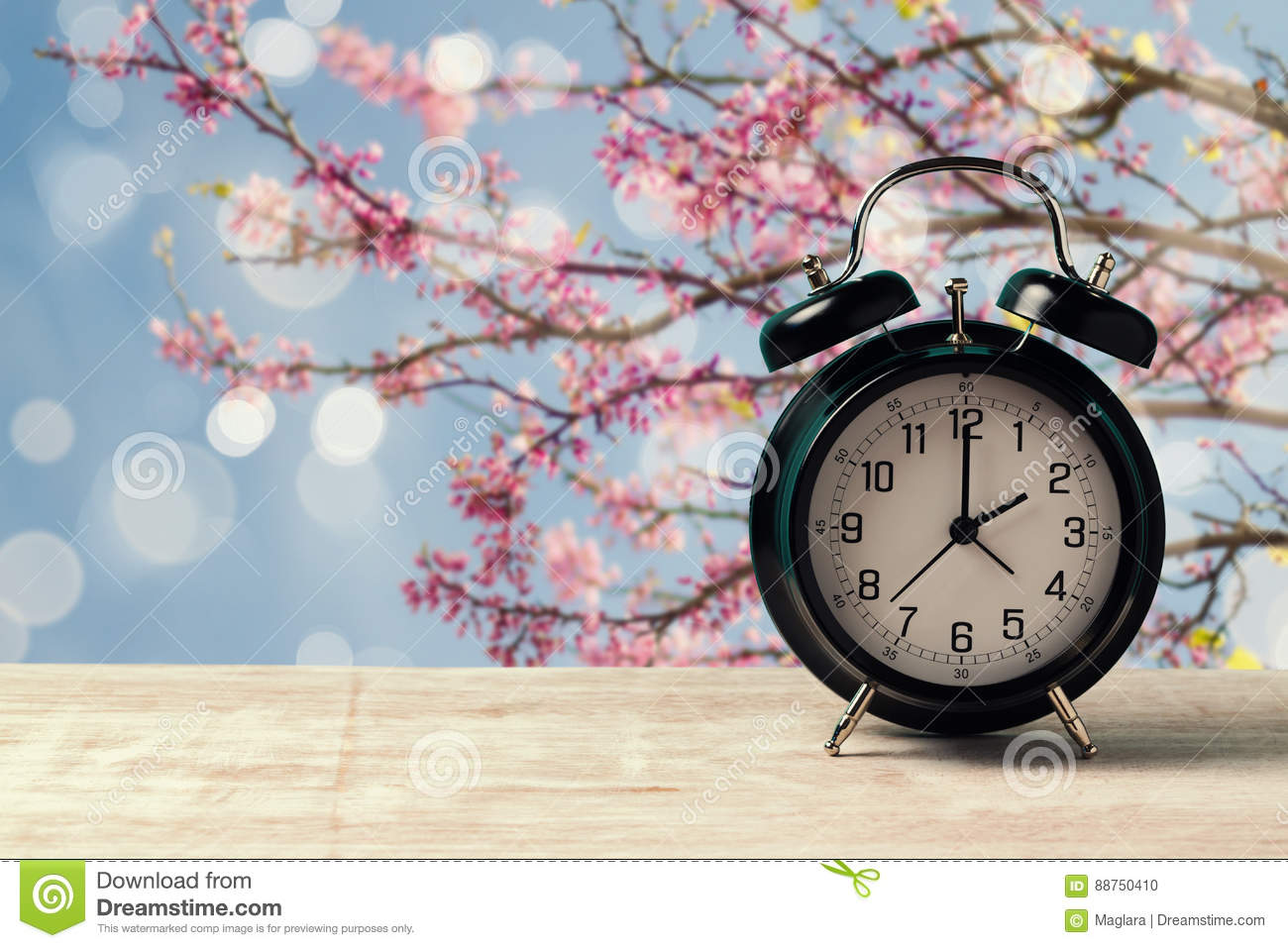 Spring time change concept with alarm clock on wooden table over nature tree blossom