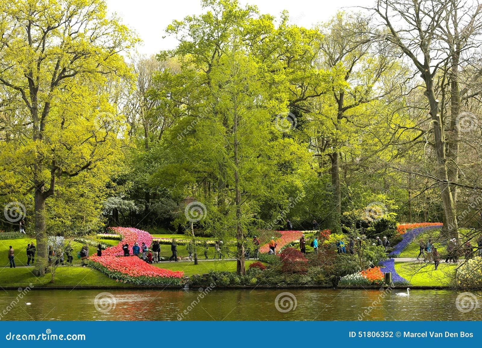 Spring time in the keukenhof garden