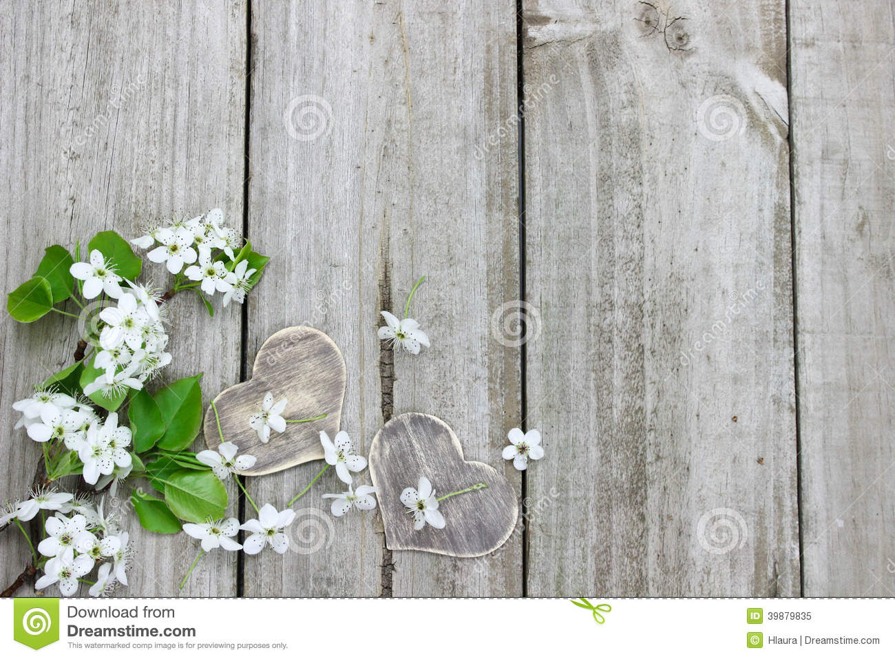 Garden gate plans - Spring Tree Blossoms And Wood Hearts Border Wooden Fence