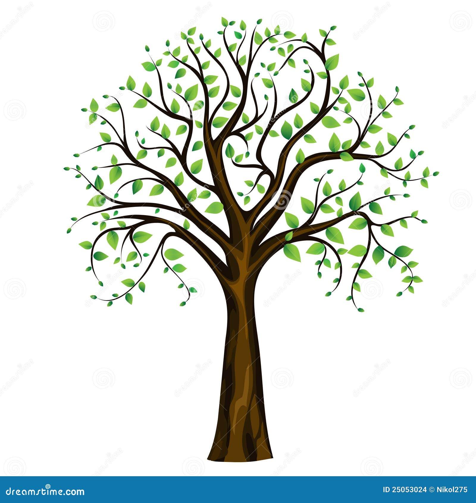 Vector Illustration Tree: Spring Tree, Vector Stock Vector. Illustration Of Blossom