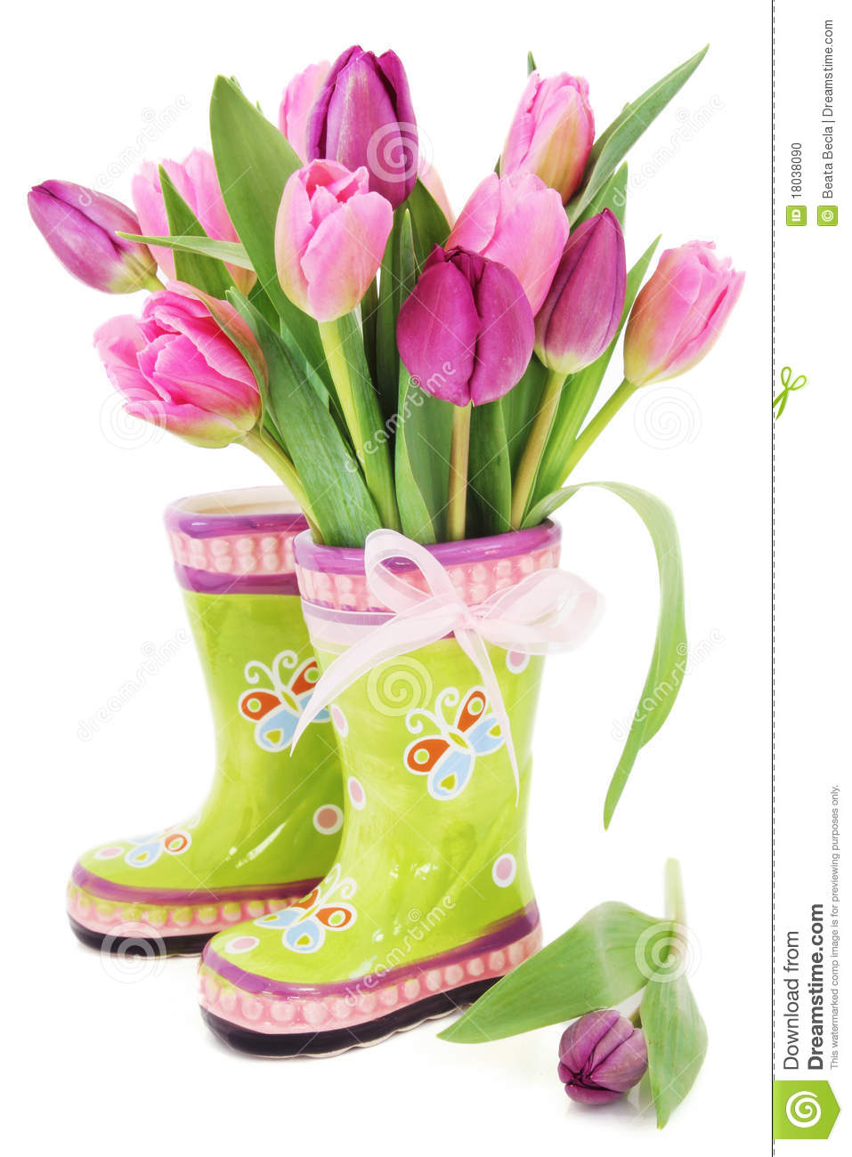 Spring Tulip Flowers In Boots Stock Photo Image 18038090