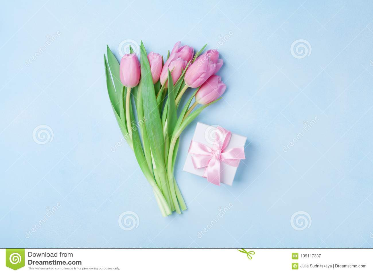 Spring Tulip Flowers And Gift Box On Blue Pastel Table Top View