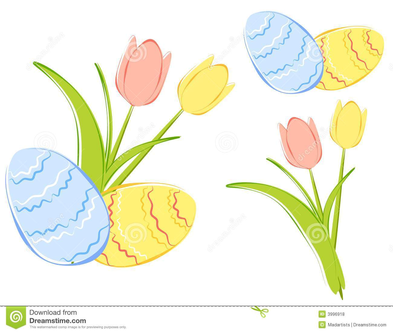 background illustration featuring a pair of spring tulips in pink ...