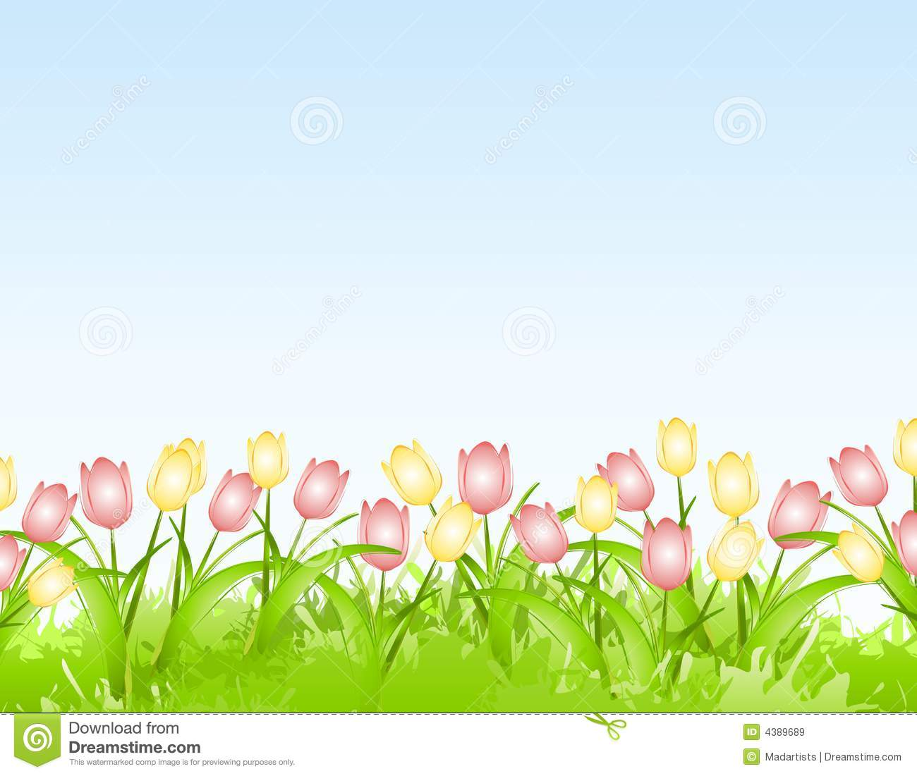 Spring Tulips Flower Border Background Stock Image Image Of Floral