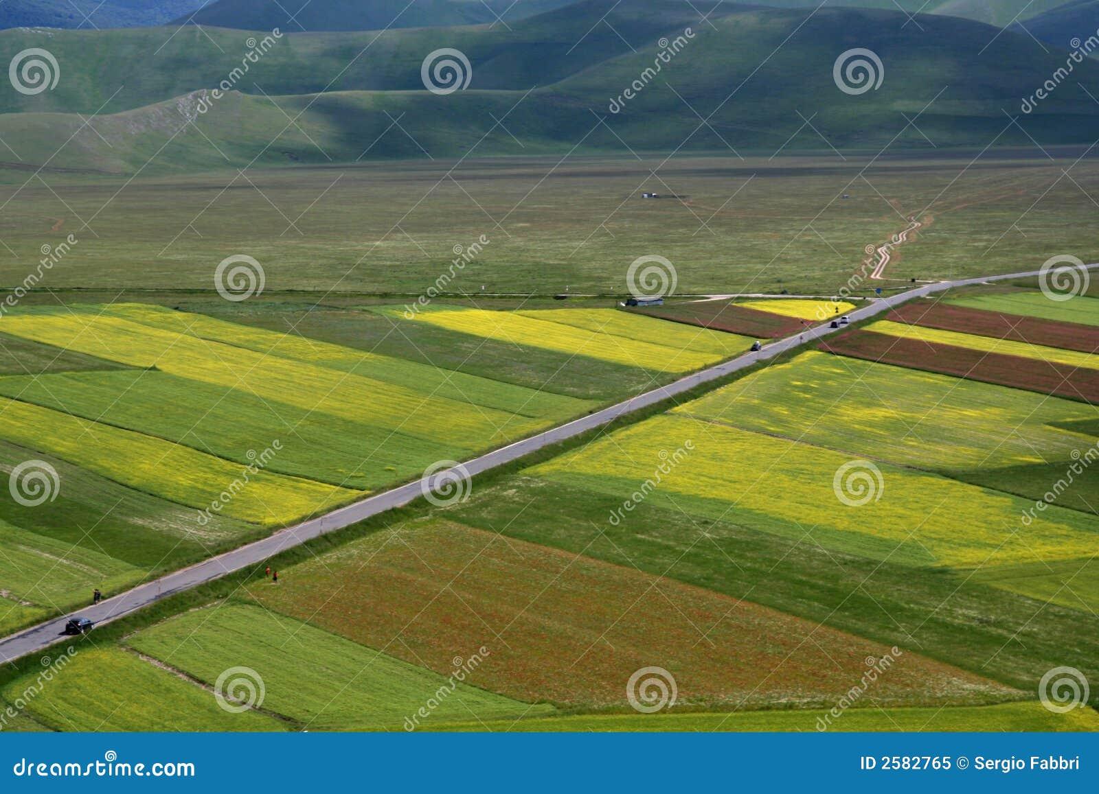 /spring van Castelluccio landschap