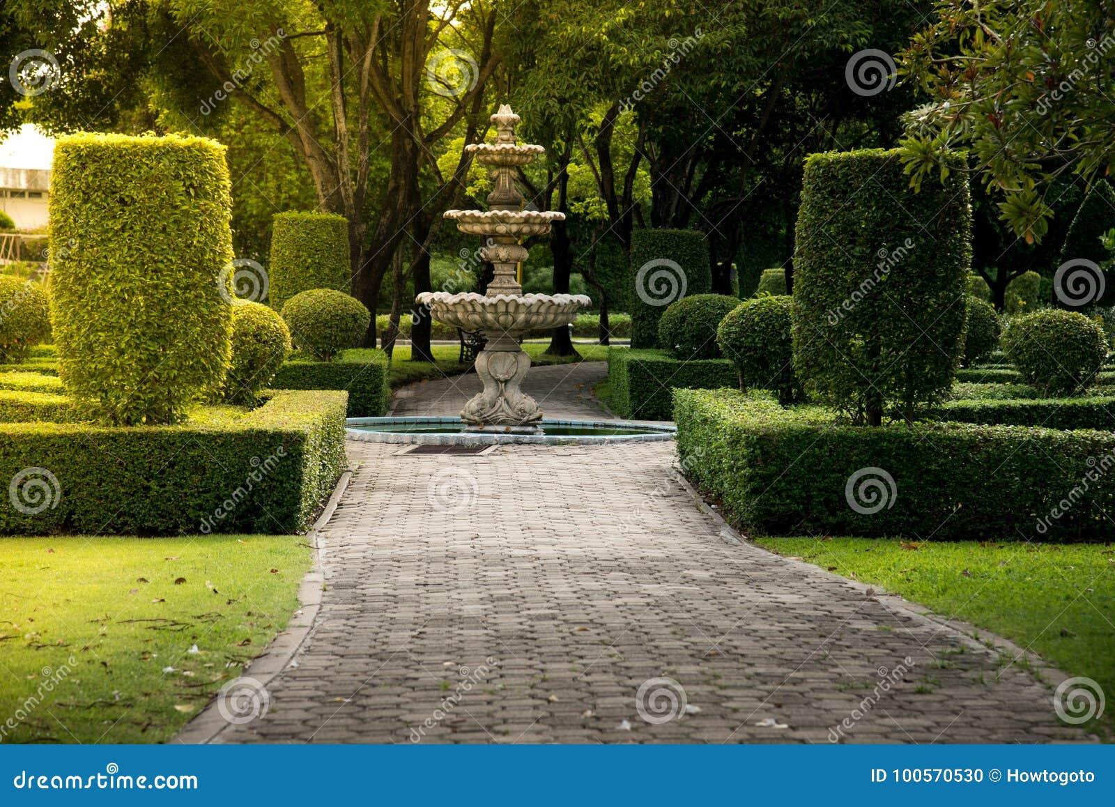 Springbrunn i parkera med hårt solljus Bakgrund för textur för grön buskevägg naturlig med den conc jordningen