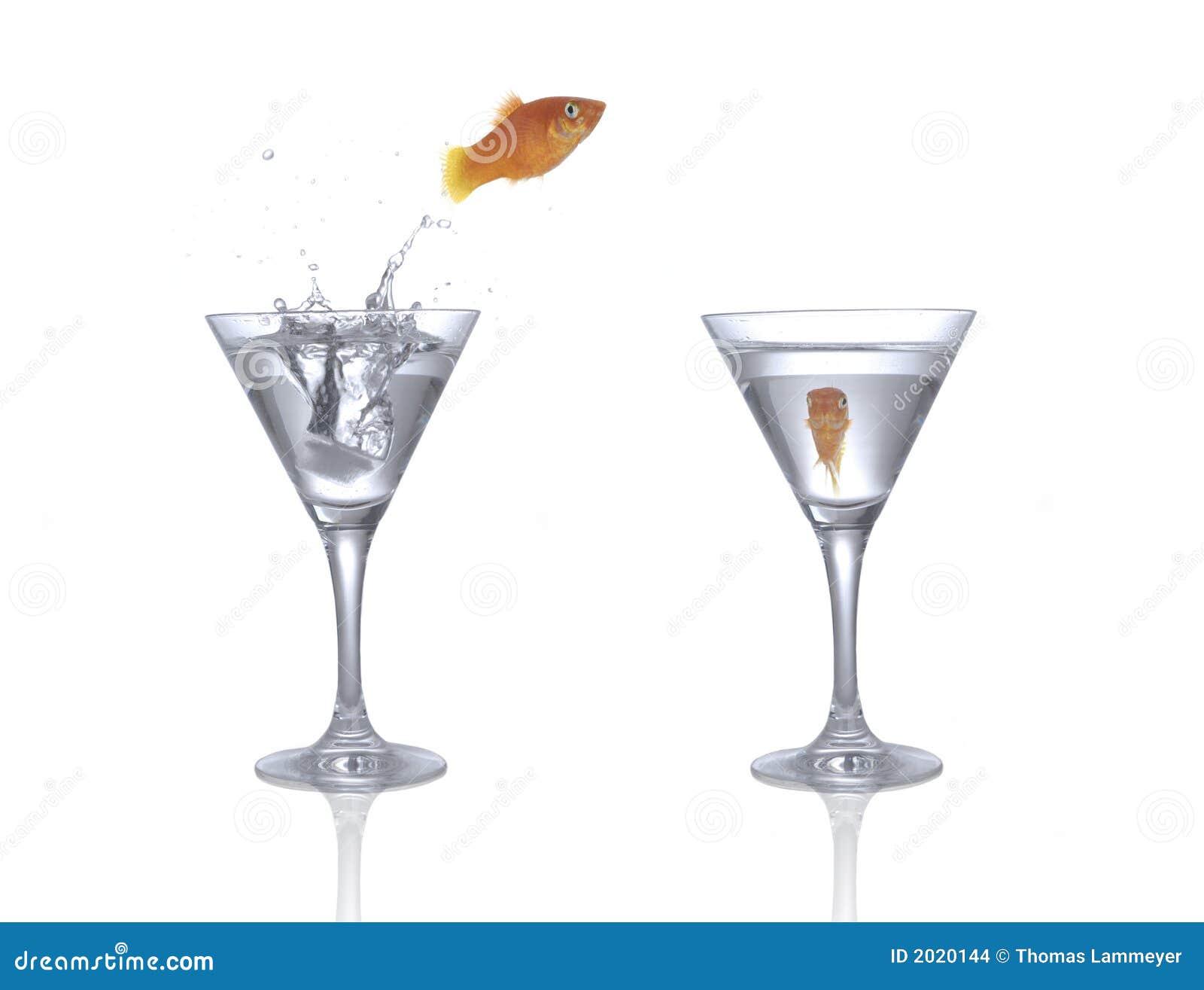 Springender Goldfish