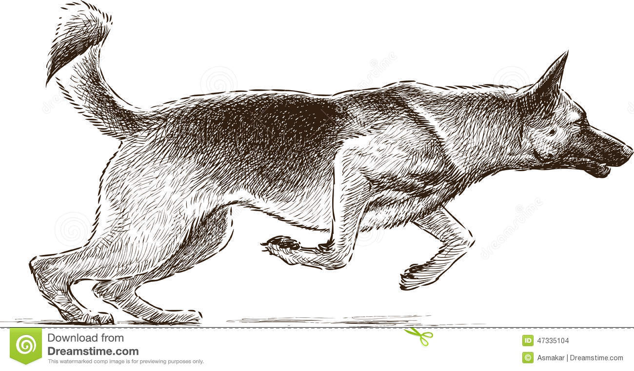 how to draw a jumping dog