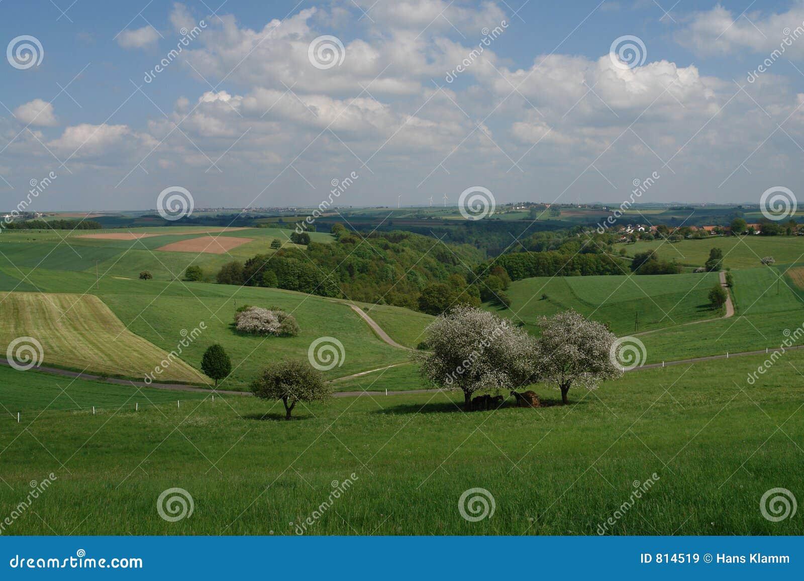 Springtime Hills