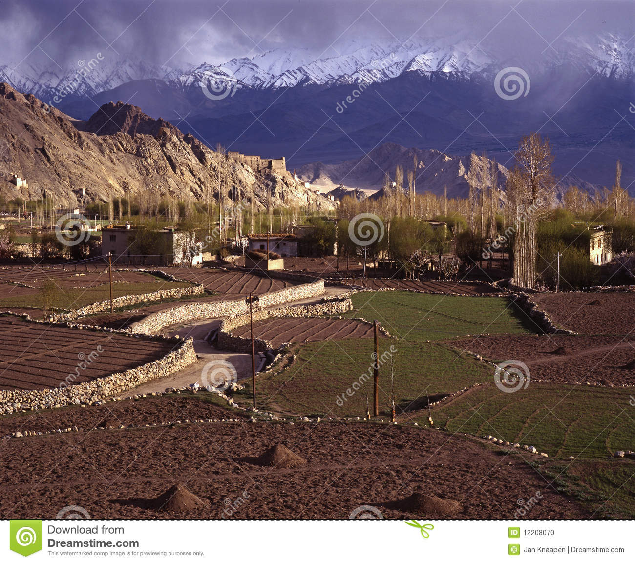 Download Springtime in Leh, Ladakh stock photo. Image of indian - 12208070