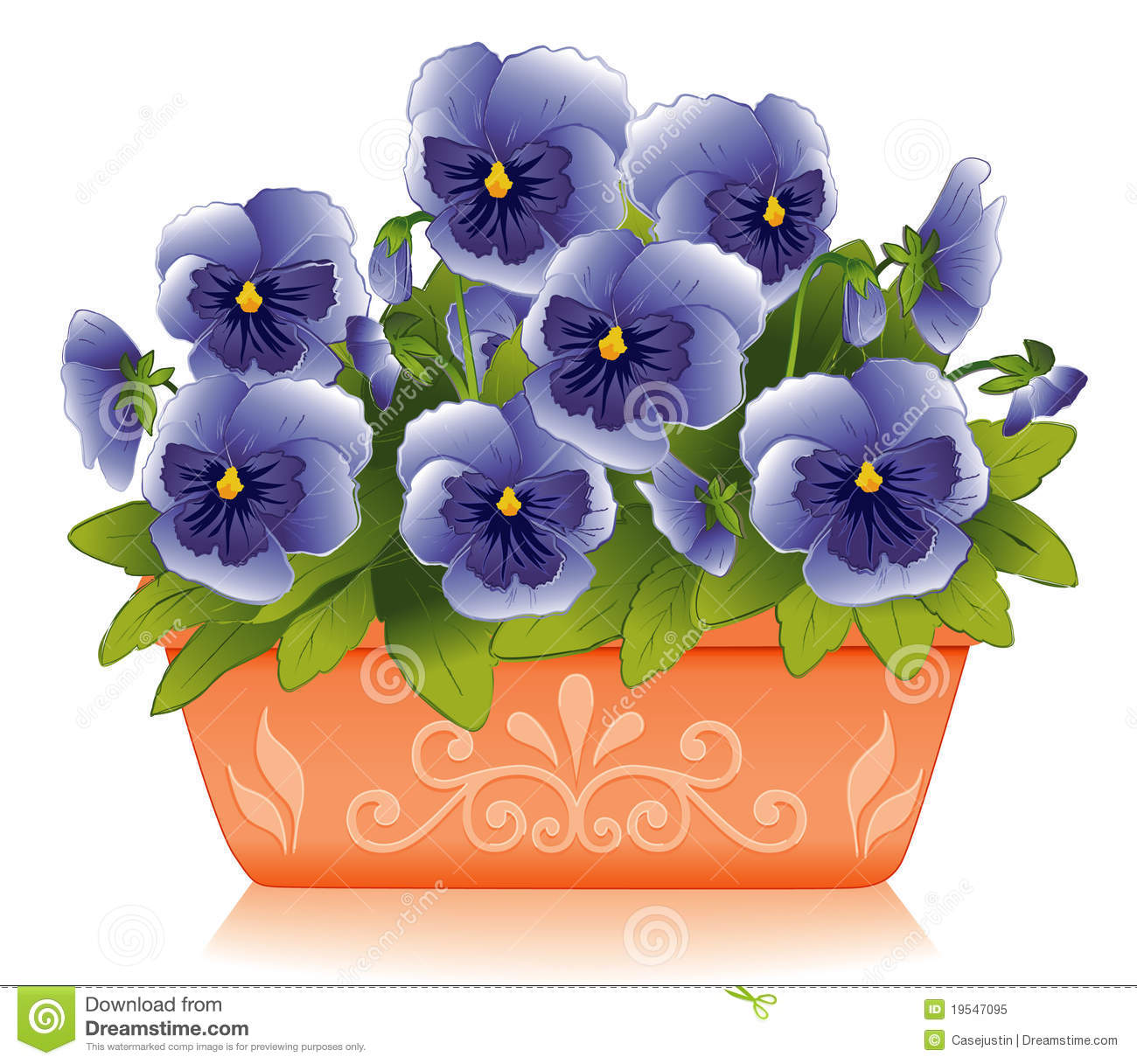 Springtime Pansies Royalty Free Stock Photo Image 19547095