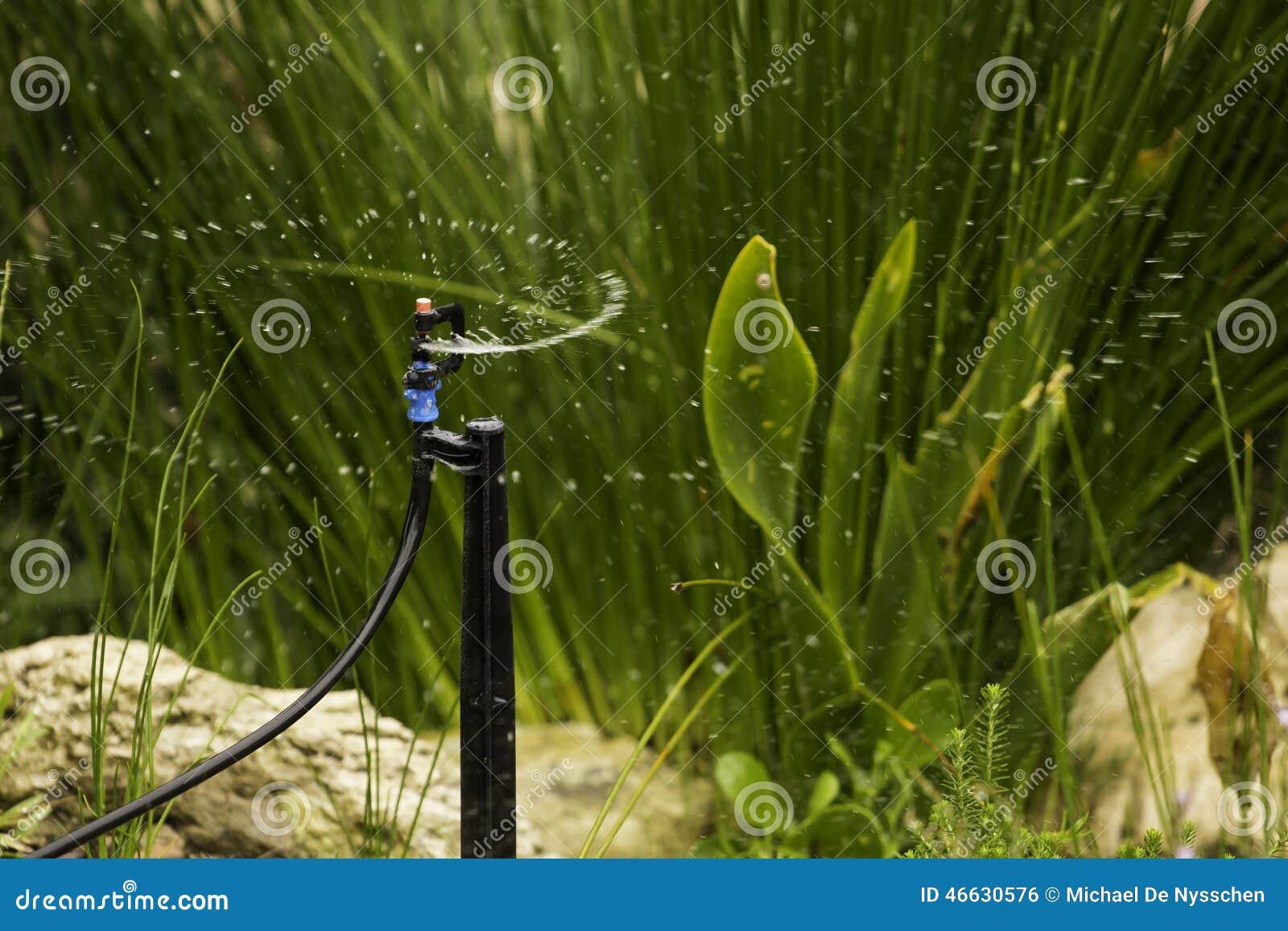 Sprinkler System Spraying Water Garden Stock Photo - Image ...