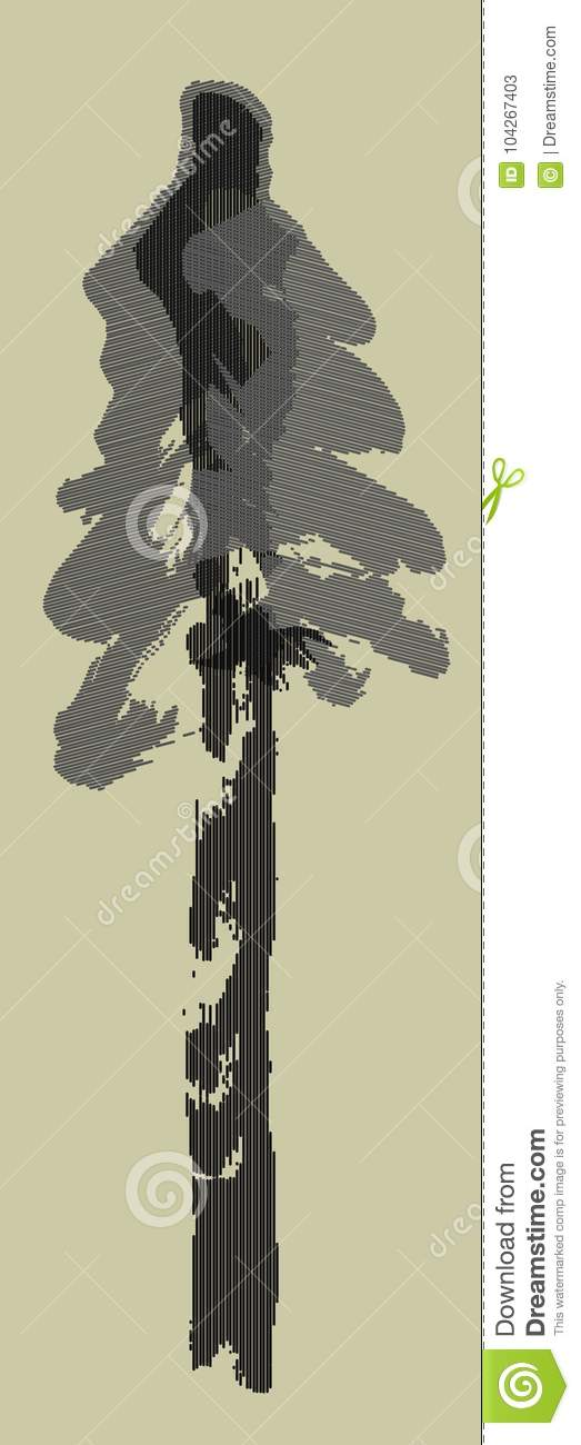 Spruce Tree Drawing Picea Abies Cold Morning Stock Illustration