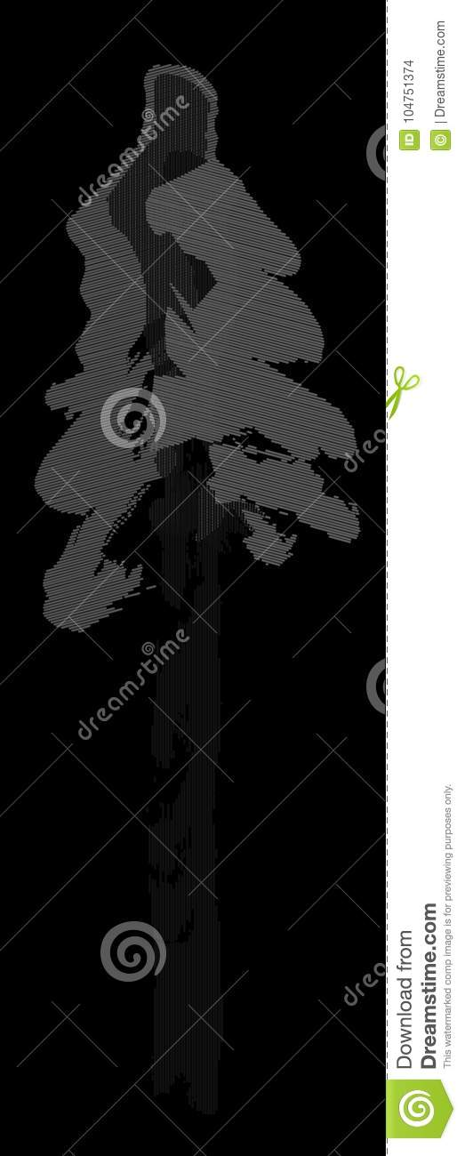 Spruce Tree Drawing Picea Abies Winter Night Black Stock