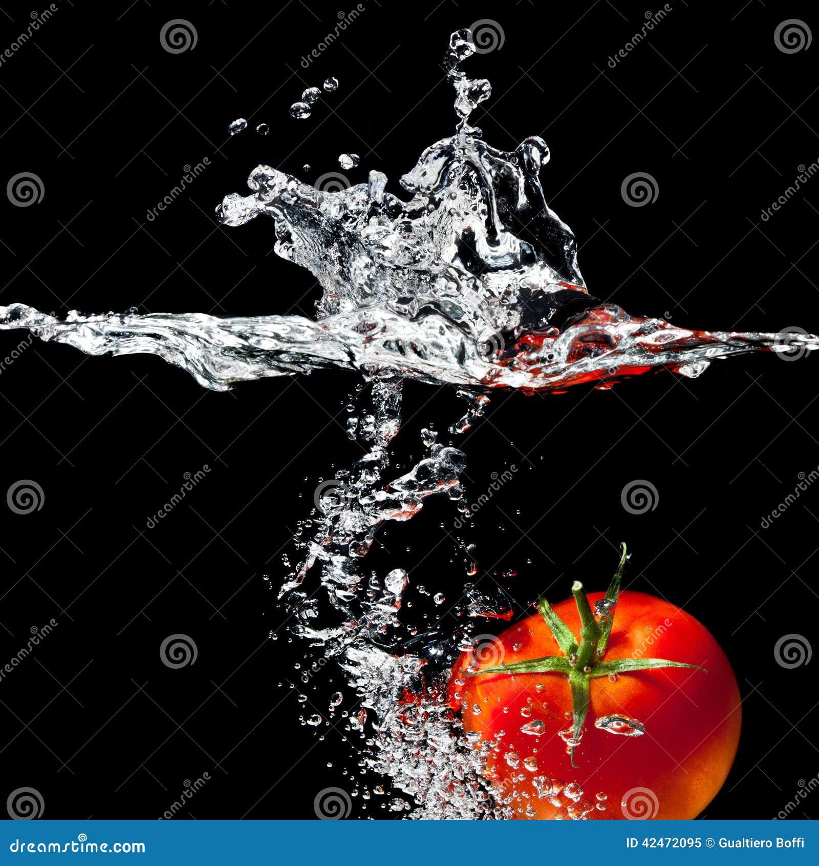 Spruzzata del pomodoro