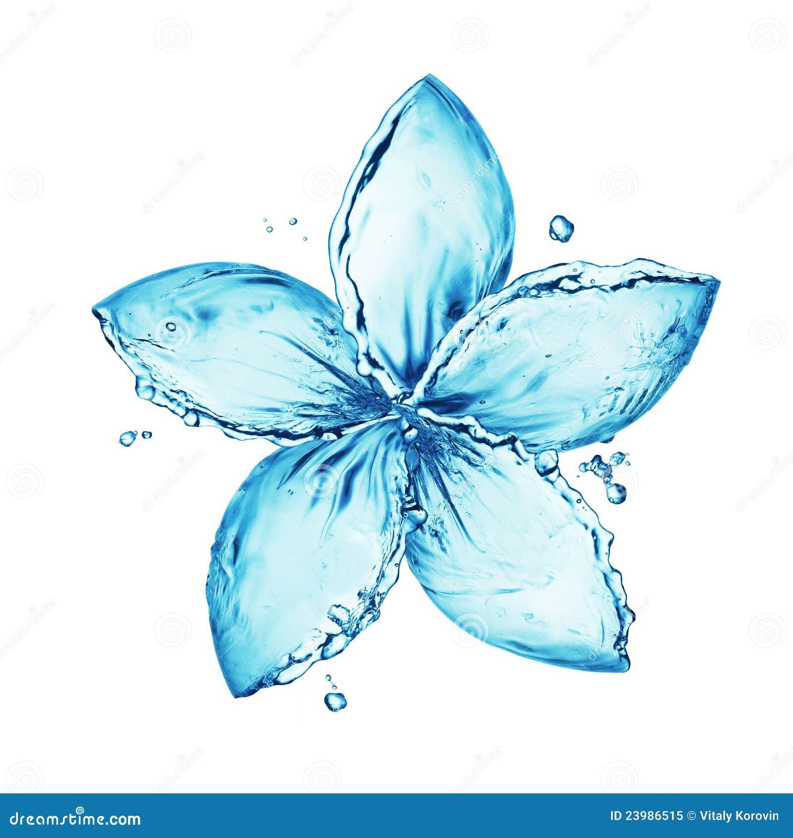 Spruzzata dell acqua, fiore