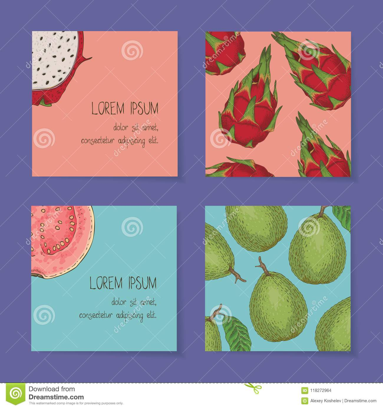 Fruit Business Cards Template Collection Stock Vector Illustration