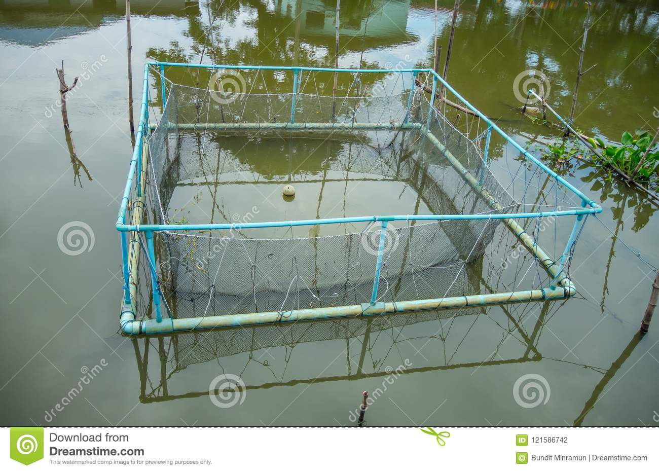 Square Freshwater Pisciculture Fish Farming Net Cage In A Canal In A