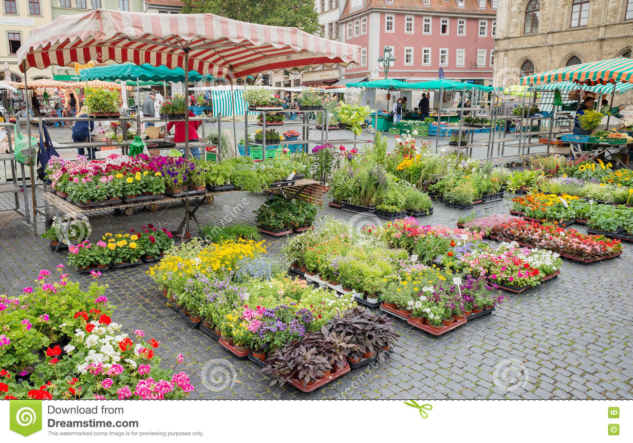 Square street market flower stall farmer production Weimar Germany