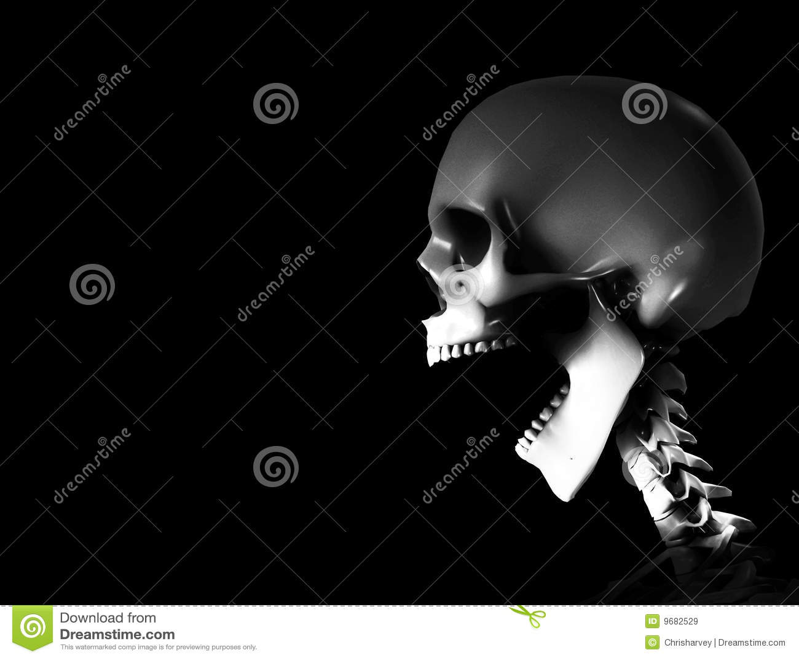Squelette de cri