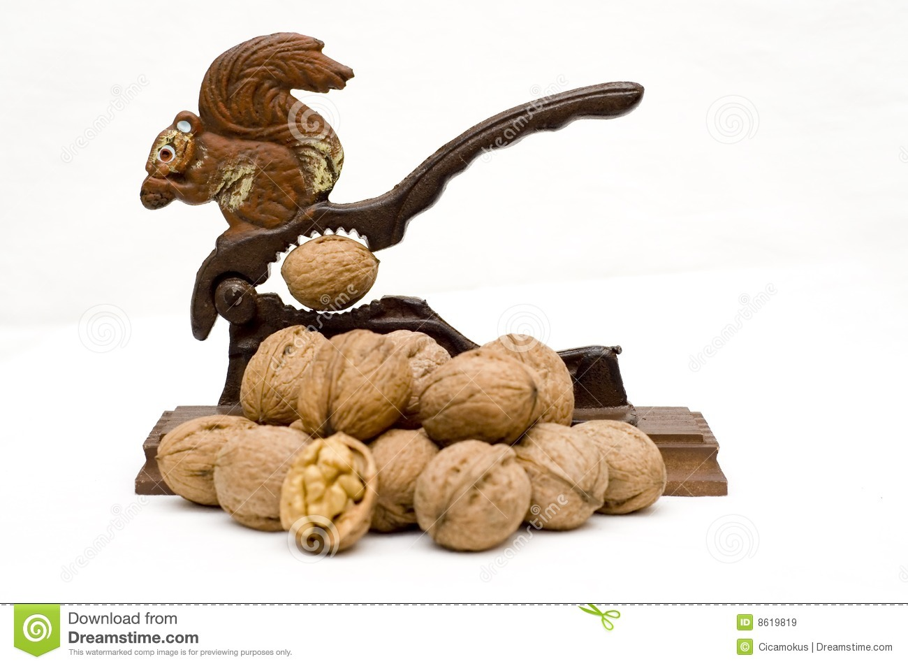 Squirrel nutcracker and walnuts stock image image 8619819 Nutcracker squirrel