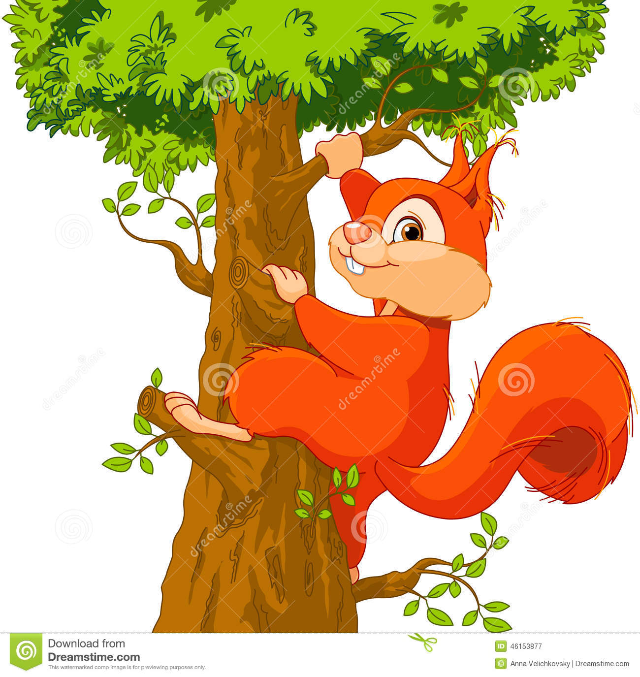 Squirrel On The Tree Stock Vector - Image: 46153877